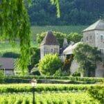 Burgundy 1200