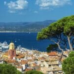 Saint Tropez Tree 800