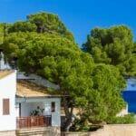 Huis Ibiza Spanje 2200 x 450